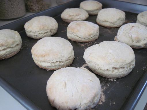 butter and milk biscuits